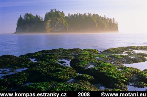 OLYMPIC COAST, WASHINGTON, USA (KATEŘINA A MILOŠ MOTANI) 1