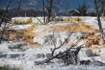 yellowstone-35-mammoth-hot-springs.jpg