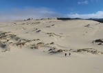 stopem-do-oregonu-04-oregon-dunes.jpg