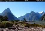 nz-south-island-26-milford-sound.jpg