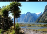 nz-south-island-27-milford-sound.jpg